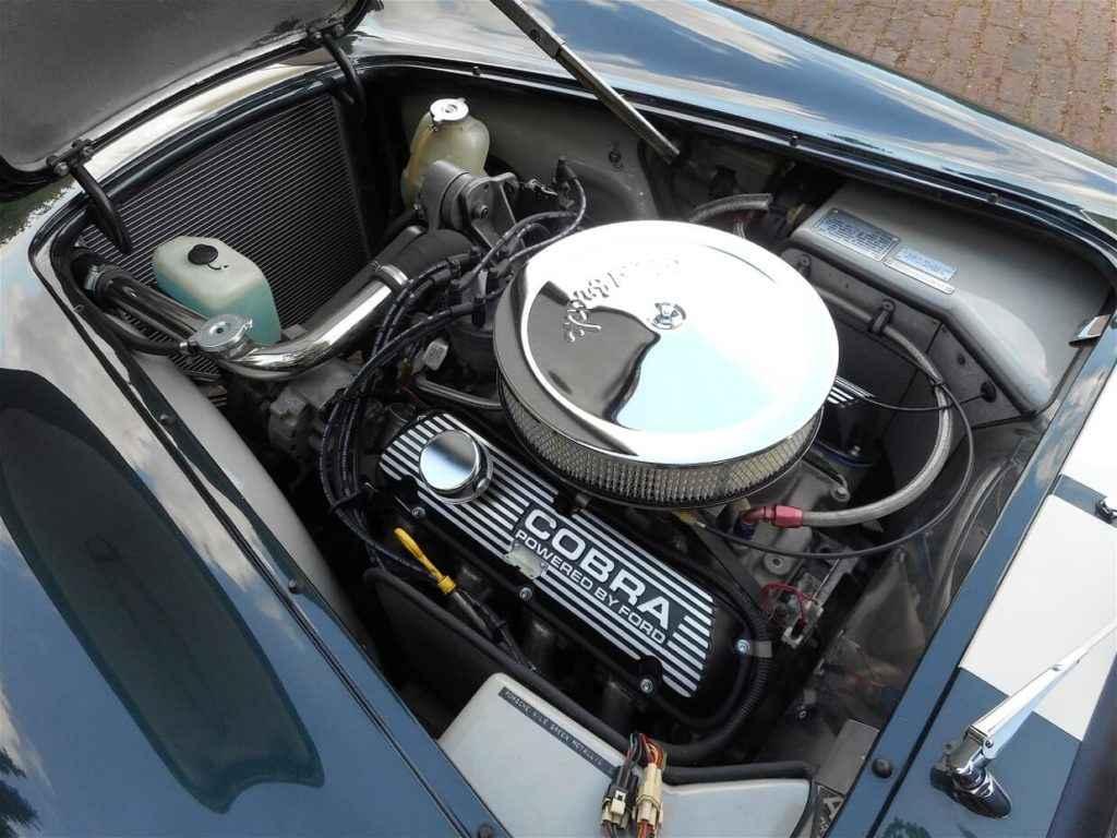 ac-cobra-lightweight-green-9